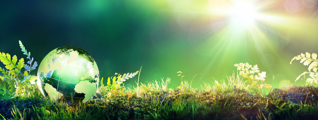 Profoam Engagements Respect de l'environnement